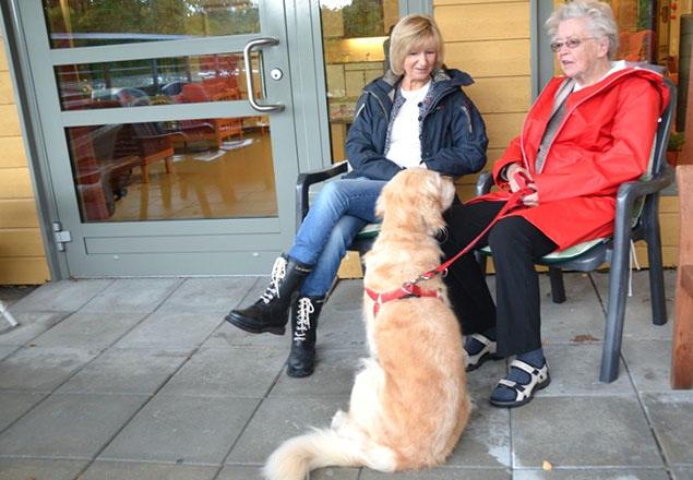 Besøk av hunden på sykehjemmet. Foto: Sissel Jenseth